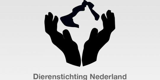 Logo Dierenstichting Nederland