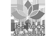Klant Lisa Roos Gewichtscoach bij PIM! Webdesign logo
