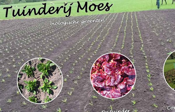 Website Tuinderij Moes
